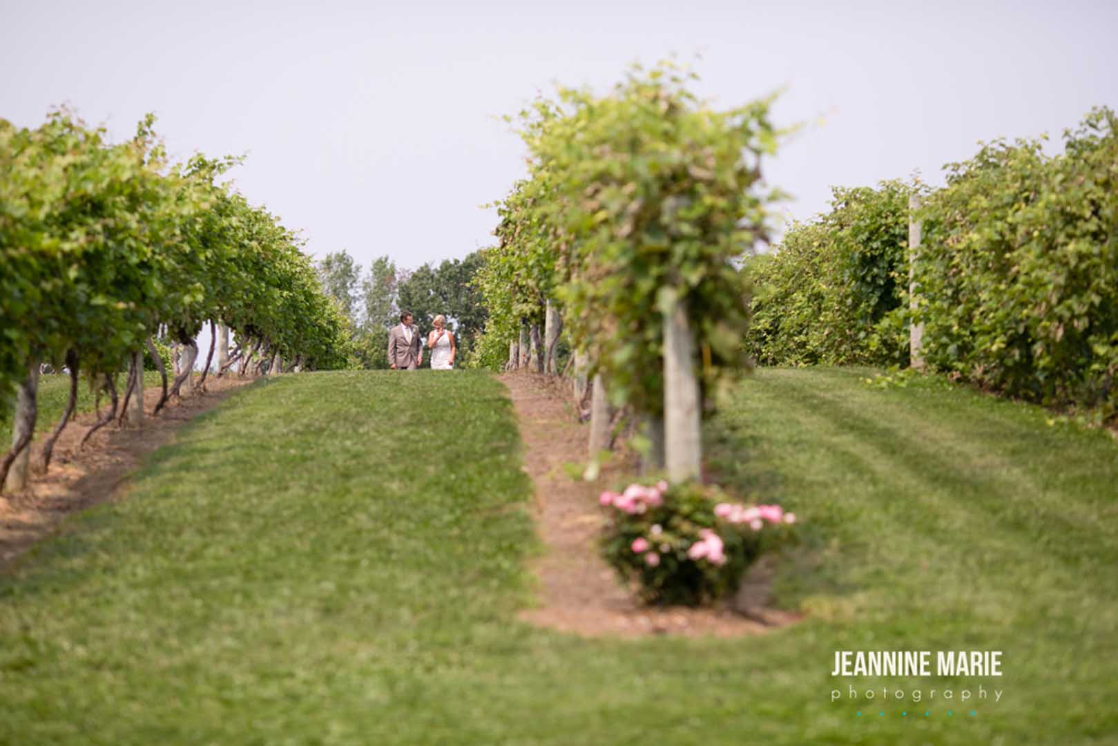 Couple walking through the grape vines at Cannon River Winery's vineyard