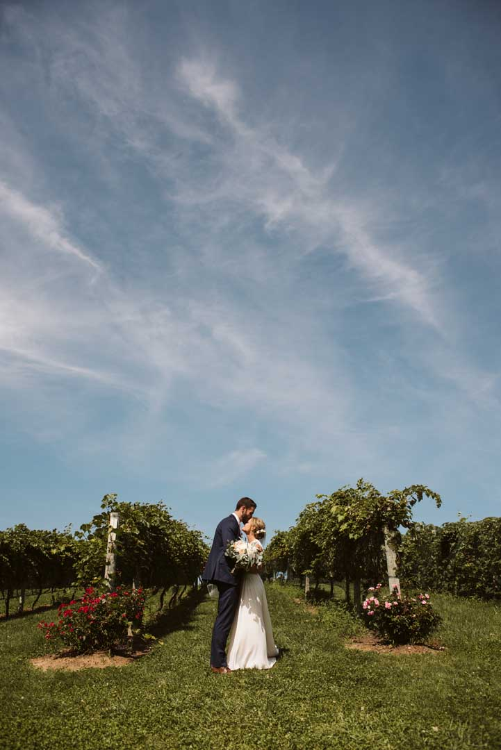 Couple embracing in the rows of grape vines at a minnesota wedding vineyard