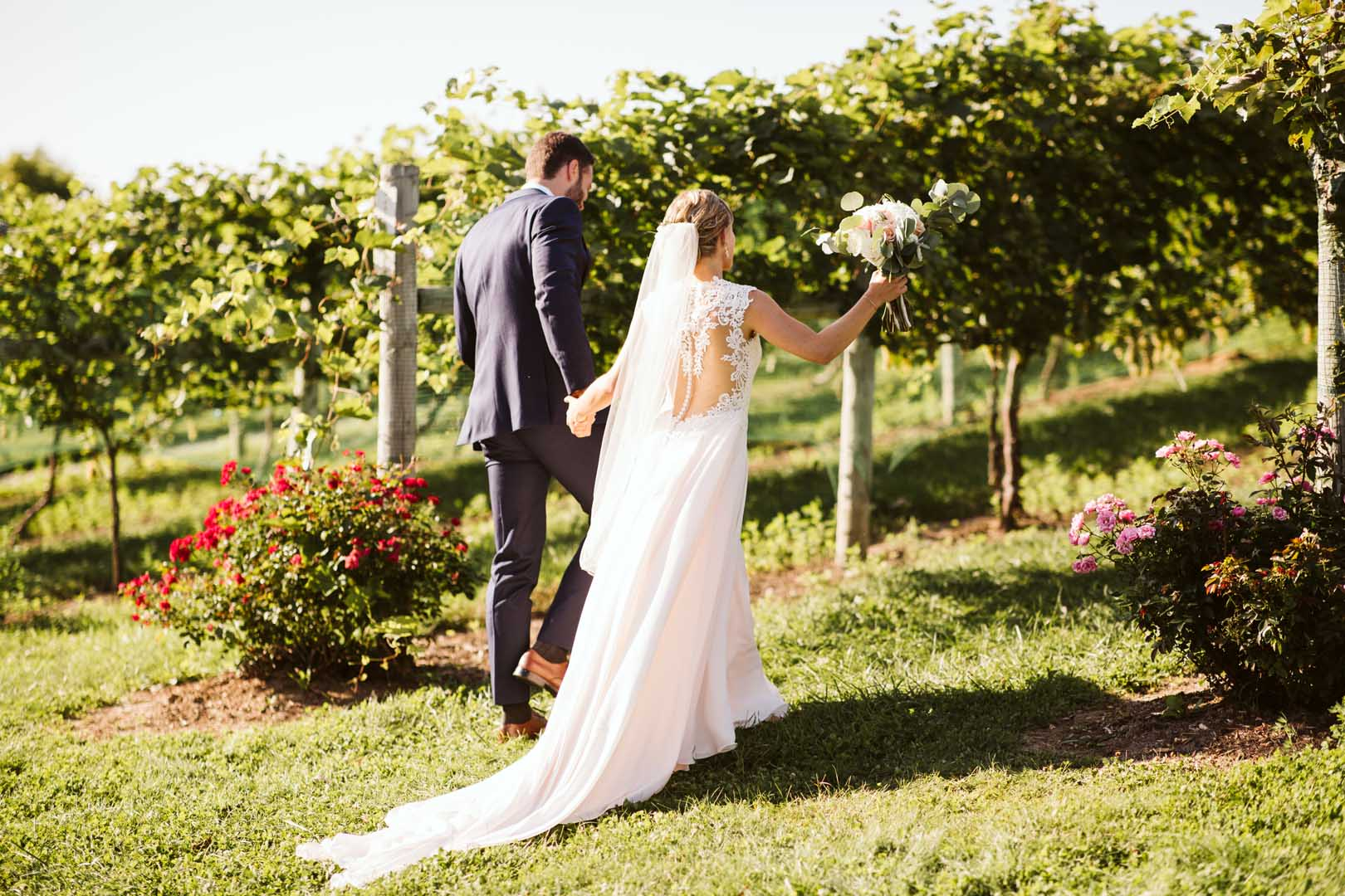 Couple holding hands and walking through grape vines at a wedding vineyard